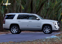 2019 Cadillac Escalade Right Side View