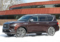 2019 Infiniti QX80 Left Side View