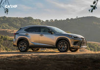 2019 Lexus NX 300 Right Side View