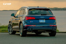 2020 Audi SQ5 Rear View