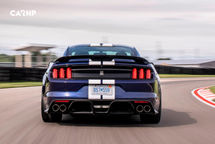 2020 Ford Mustang Shelby GT350 Coupe Rear View