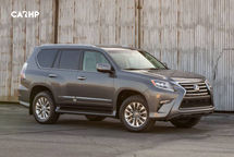 2020 Lexus GX 460 Right Side View